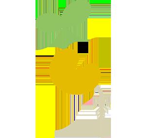 Friese Voedselbeweging